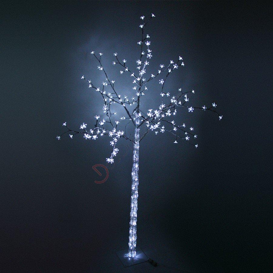 Dalsher - Alberi luminosi