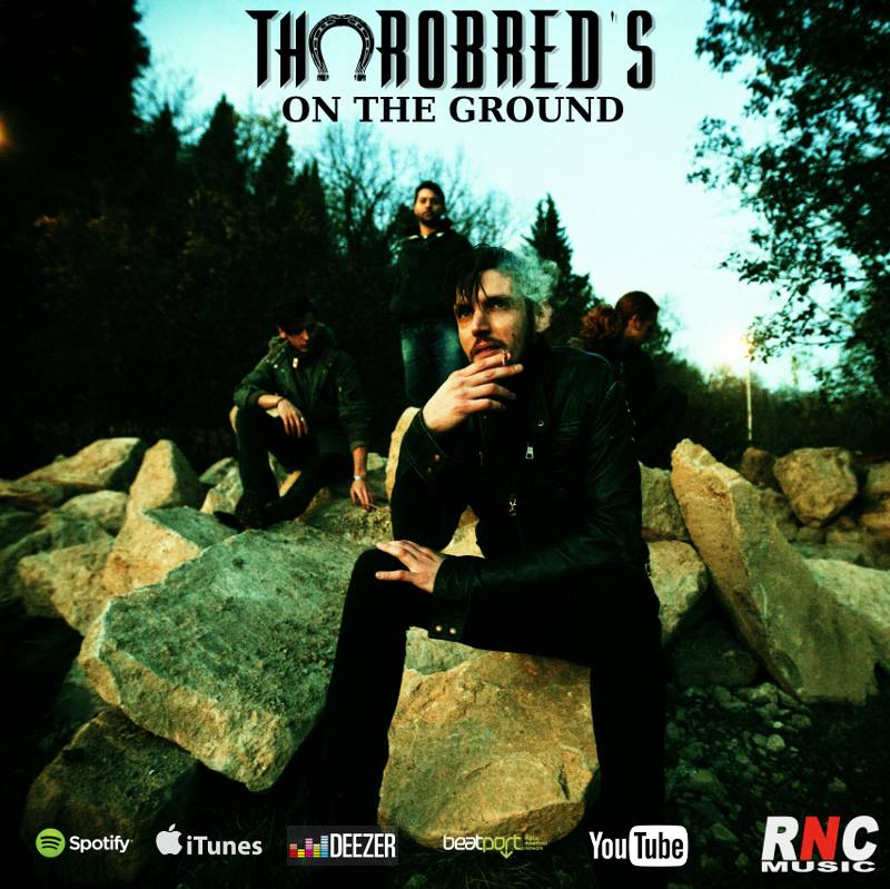 Rock Dj - Thorobred's