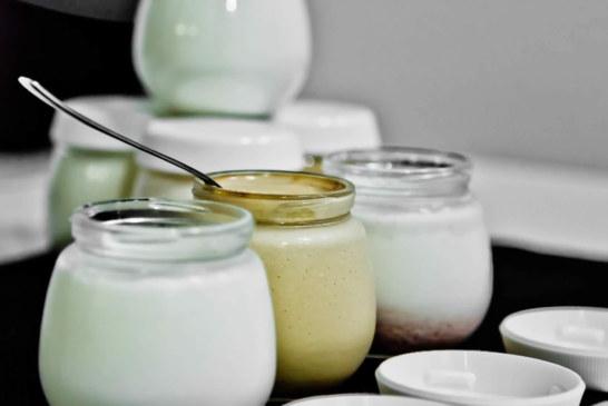 Dalsher – Vasetti di yogurt !