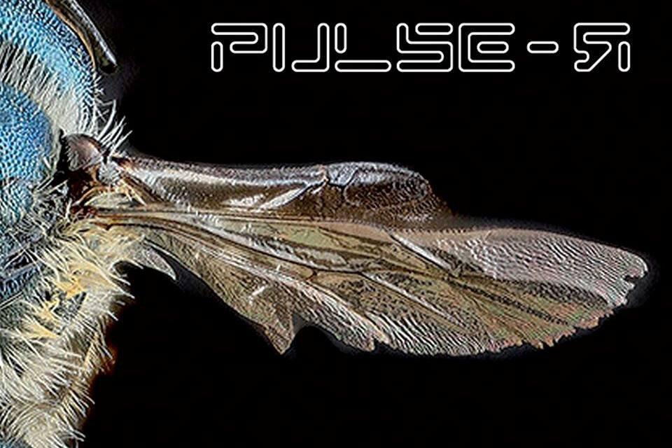Pulser - Intervista