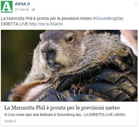 giorno-marmotta