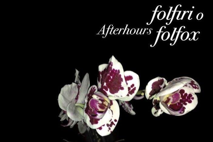 Folfiri o Folfox - Afterhours - Recensione