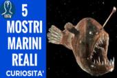I più misteriosi mostri marini
