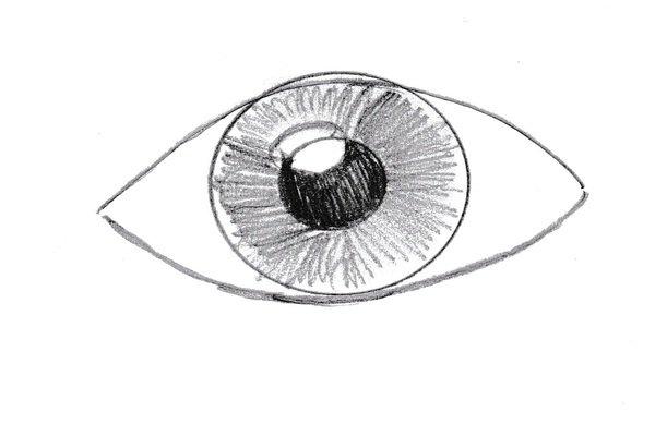 L'Occhio di Nabokov: questione di prospettive