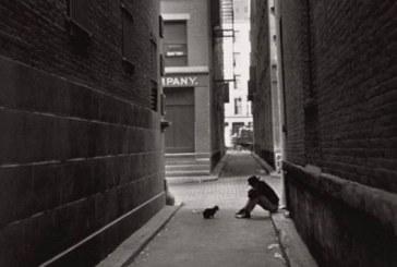 Ai piedi del muro (Il solitario – Eugène Ionesco)