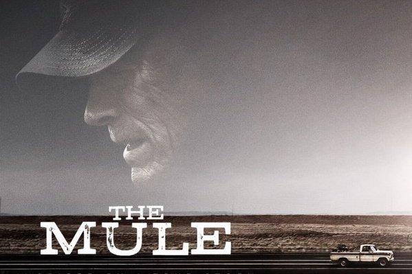 Il Corriere, The Mule - Recensione