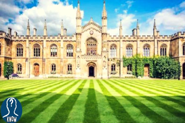 Le università più costose al mondo