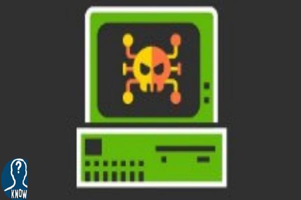 La nascita del primo virus informatico